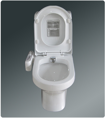 Toilets with bidet built in